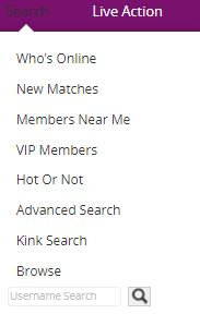 Passion.com Search Features