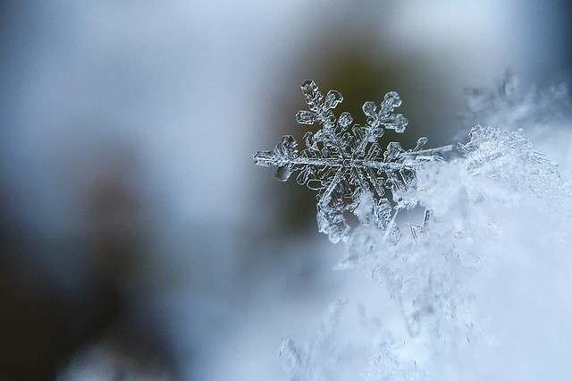 close up of snow flake