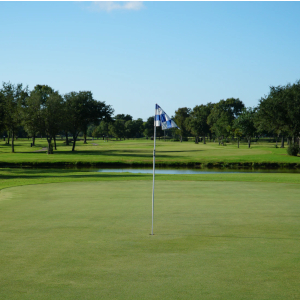 Golf course flag stick on the green