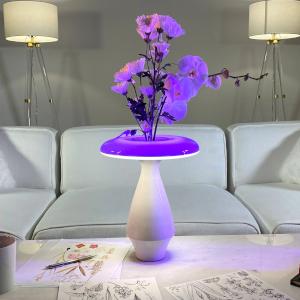 FloraLume Lamp